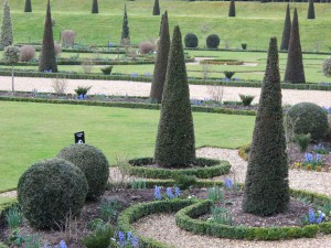 Eiben als Kugeln und Spitzen im Garten von Hampton Court Palace
