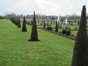 Eine Spitzen-Parade der Eiben im Garten von Hampton Court Palace