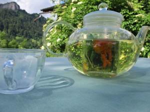 Tee aus frische gepflückten Kräutern