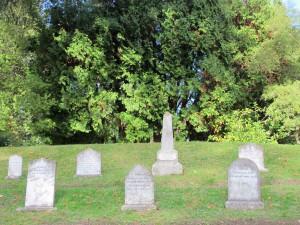 Tierfriedhof mit Gäbern von Hunden, Pferden und Kühen