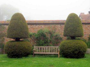 Foto von Parkbank aus Holz mit geschnittenen Eiben an den Seiten