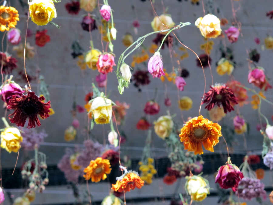 Rebecca Louise Law Berlin Bikini 33