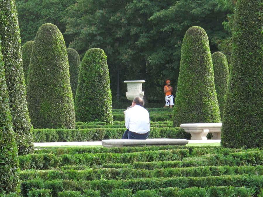 Der Geheime Garten Buch