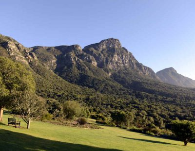 SÜDAFRIKA: Kirstenbosch – Botanischer Garten am Tafelberg