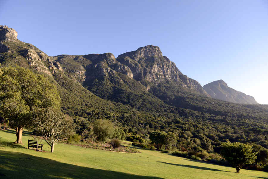 Der Botanische Garten Kirstenbosch liegt direkt am Fuße des Tafelbergs in Kapstadt.