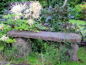 mit Pflanzen überwachsene Bank aus Stein