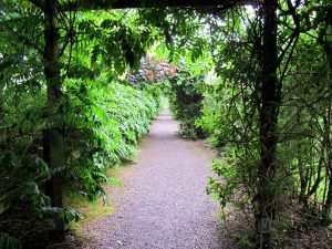 Ein Weg durch Glenview Gardens in Cork