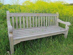 Foto einer Parkbank im Grünen