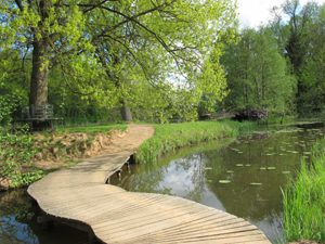 Foto eines Holzstegs