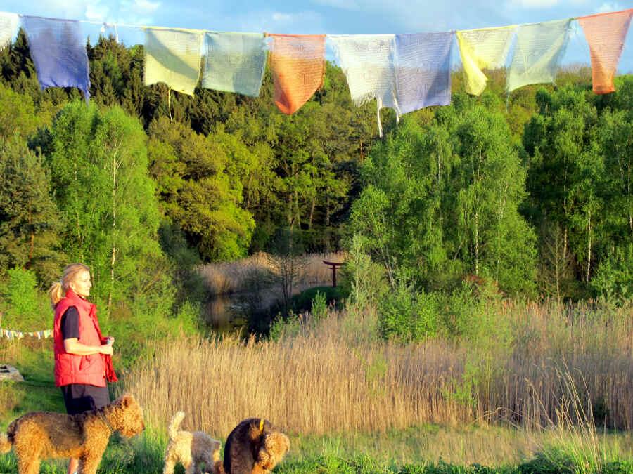 Freifrau Sabine von Süsskind blickt bei Abendstimmung in den Park, zu ihren Füßen drei ihrer Hunde
