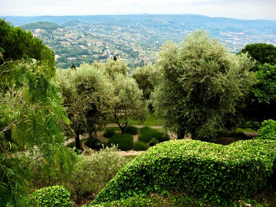 Gärten bei der Parfumstadt Grasse in der Provence Jardin Mouissone