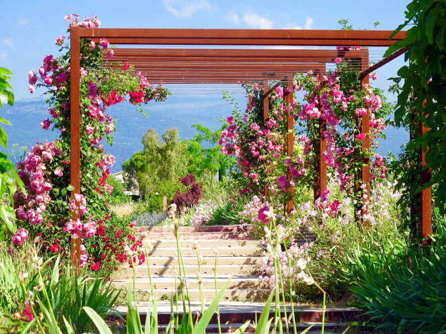 Duft-Gärten bei der Parfumstadt Grasse in der Provence MIP