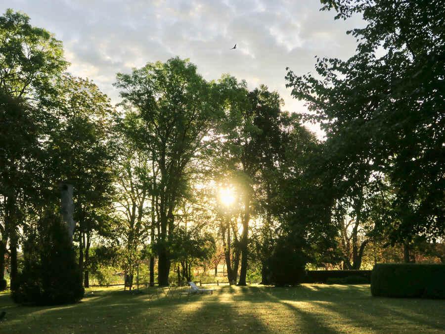Ein Park voller Bäume – Morgenstimmung im Schlosshotel Marihn in Mecklenburg