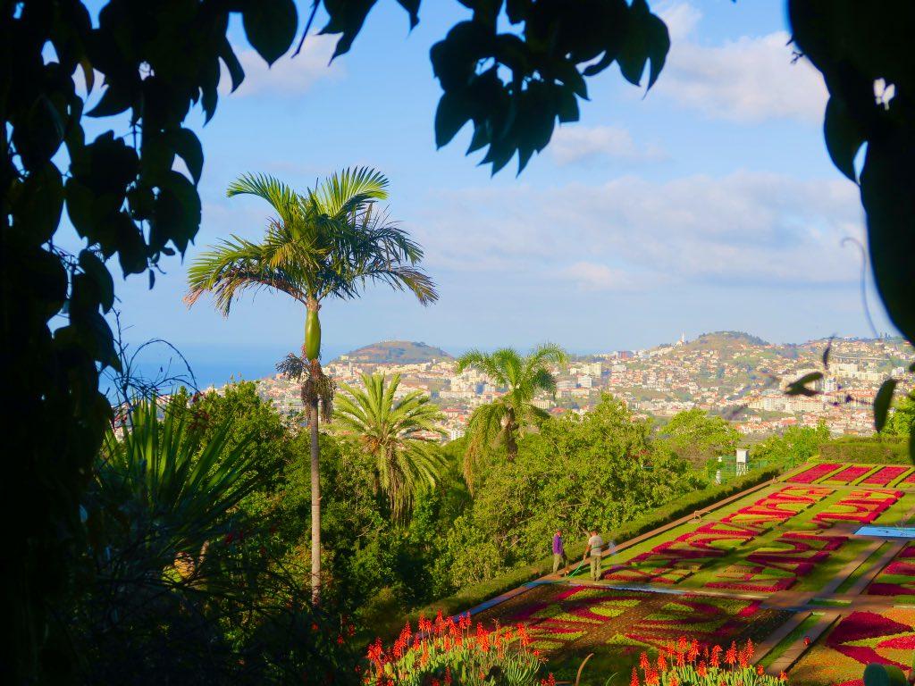 Der botanische Garten von Madeira ©DDAVID